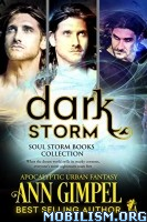 Download Dark Storm Box Set by Ann Gimpel (.ePUB)