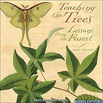 Teaching the Trees by Joan Maloof