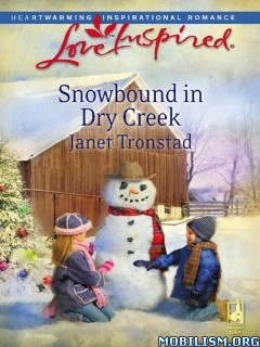Download Dry Creek series by Janet Tronstad (.ePUB)