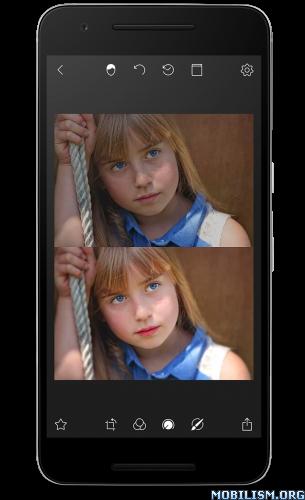 Polarr Photo Editor v4.zero.3 [Pro] – Apklizard