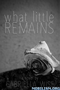 Download ebook What Little Remains by Gabriella Wise (.ePUB)