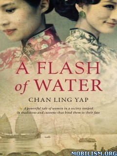 Download ebook A Flash of Water by Chan Ling Yap (.ePUB)