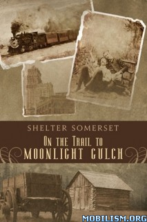 Download 4 Novels by Shelter Somerset (.ePUB) +
