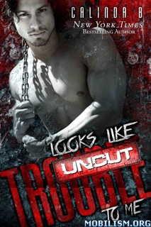 Download ebook Looks Like Trouble to Me: UNCUT by Calinda B (.ePUB)+