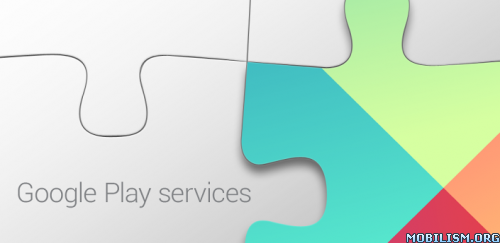Google Play services 4.3.24 (1084291-070)