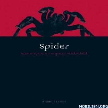 Spider (Animal Series) by Katarzyna Michalska +