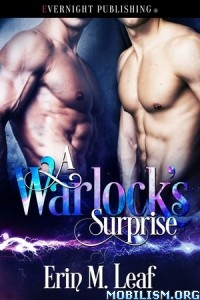 Download A Warlock's Surprise by Erin M. Leaf (.ePUB)